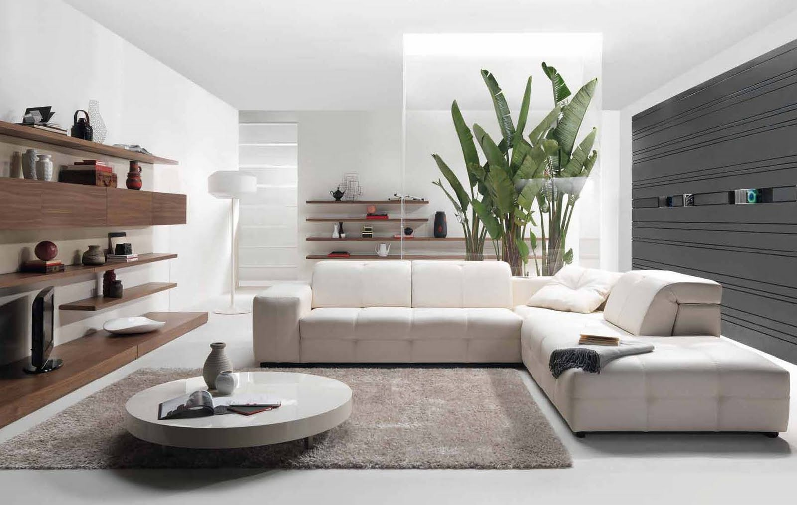 Modern Living Room with An Assortment of Elegant Sofa