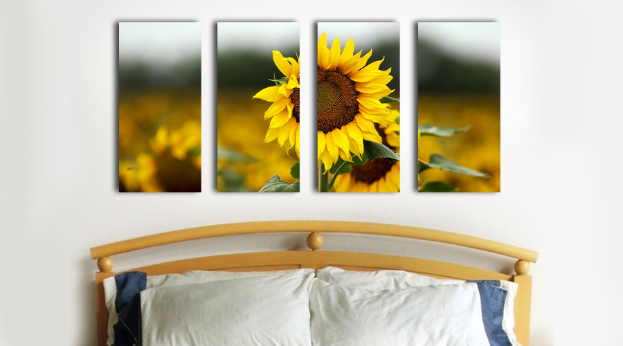 creative-canvas-prints