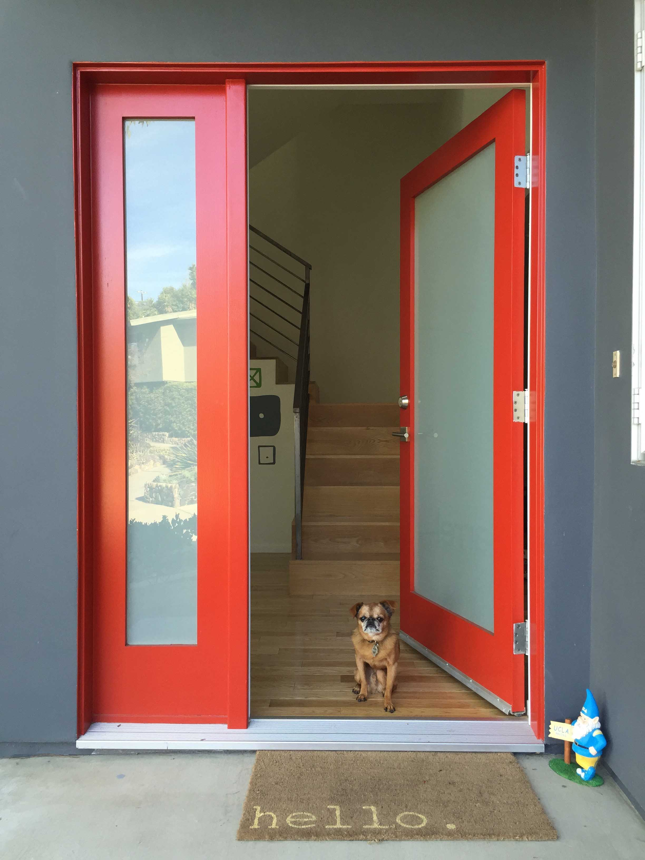 Red front door with a dog