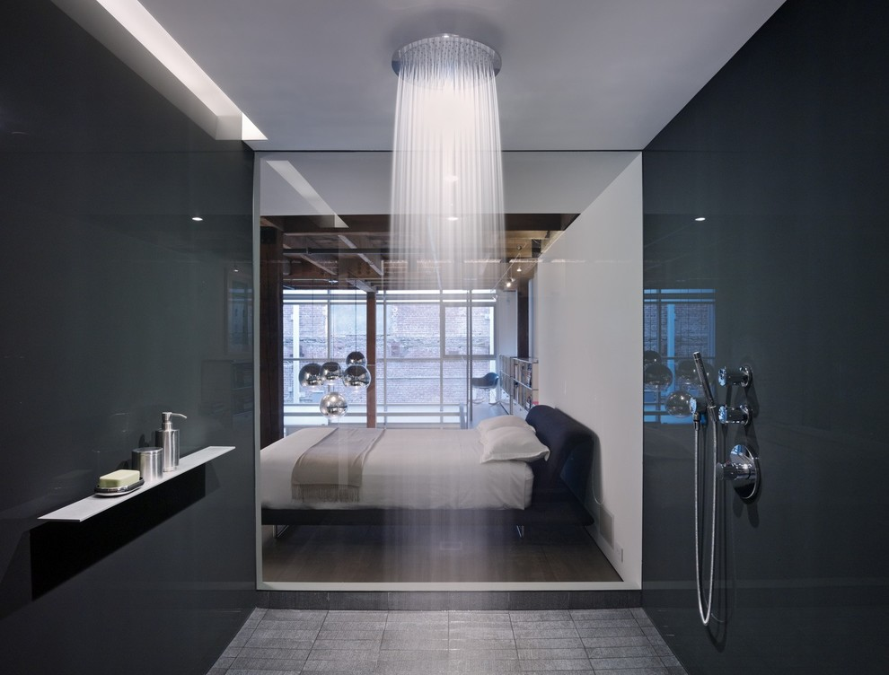 modern-walk-in-shower-bedroom-view