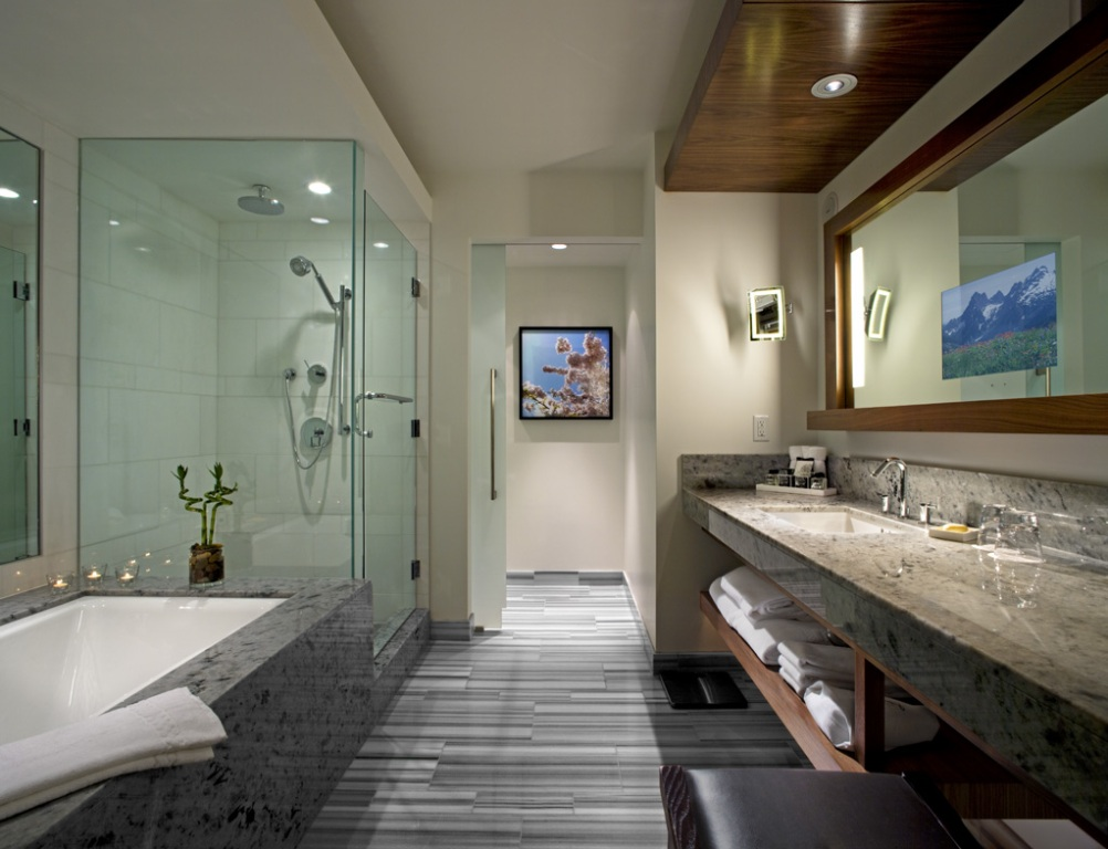 Ravishing Contemporary Bathroom Design
