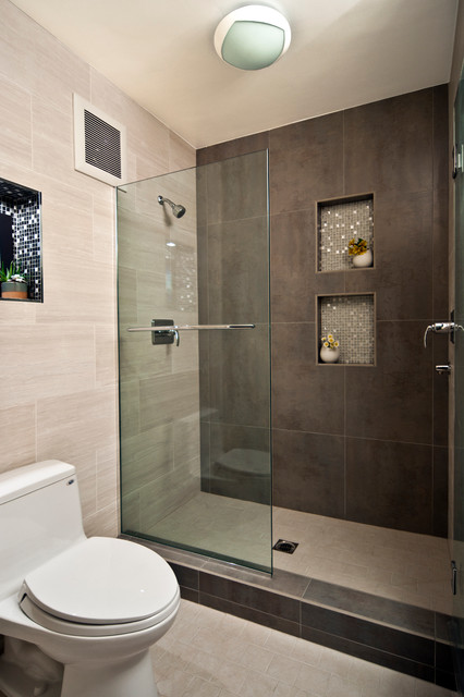 modern-frameless-bathroom-shower